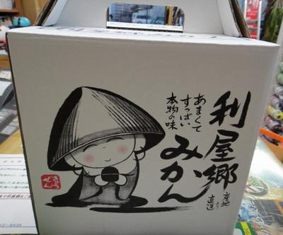 2011.12.23内海みかん1.jpg